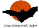 Groupe chiroptères Québec